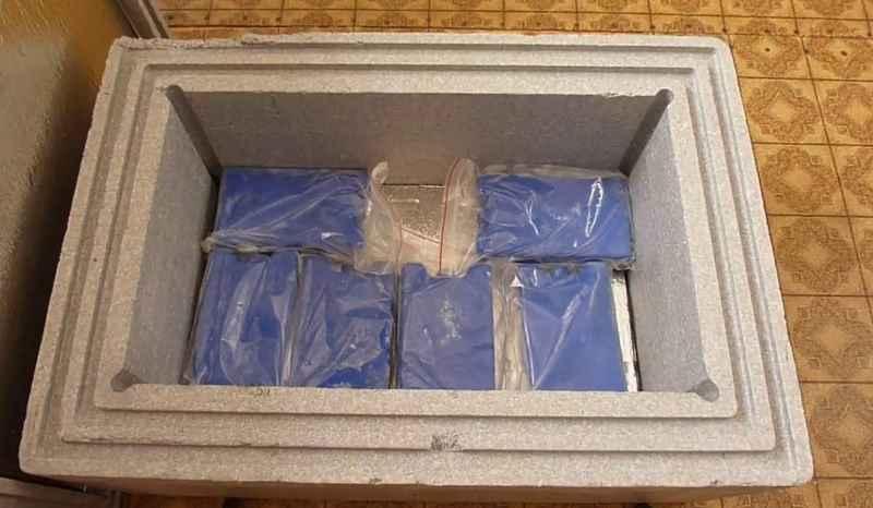 пластиковый контейнер со съемной крышкой
